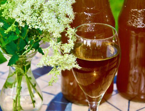 Suhkruvaba tervislik Angervaksa tõmmis Golden Steviaga