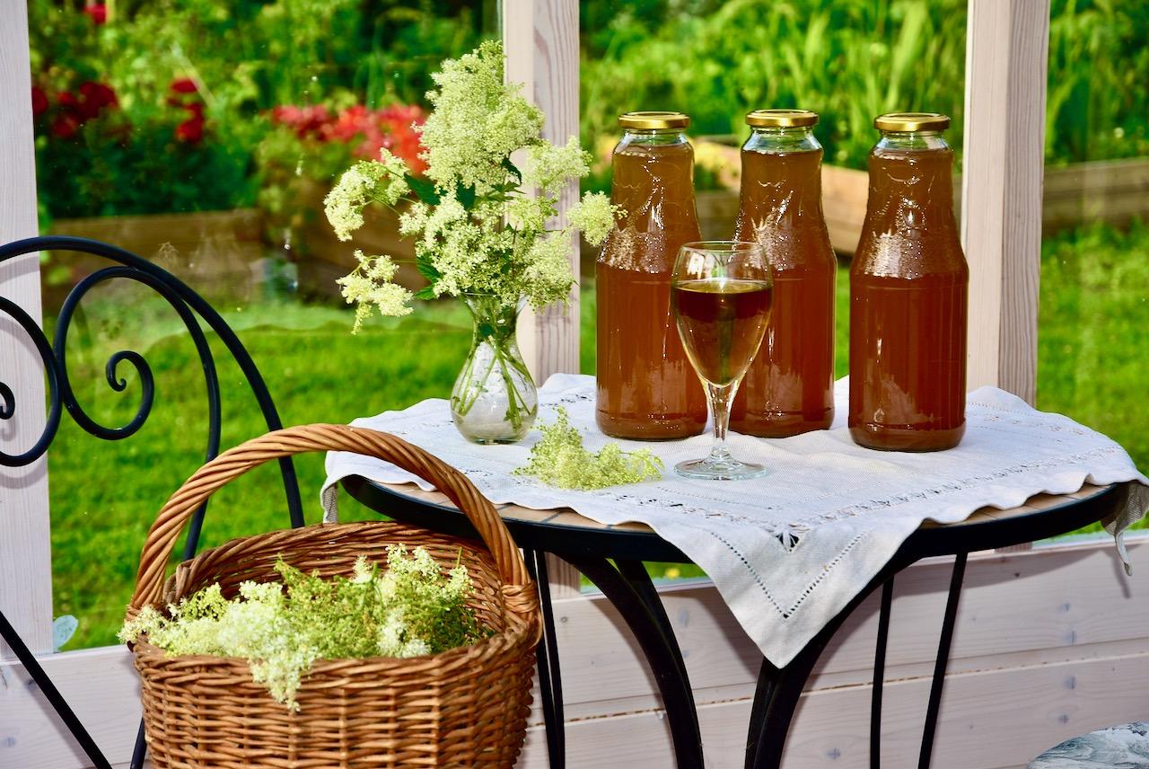Angervaksa siirup tõmmis mahl suhkruvaba golden stevia