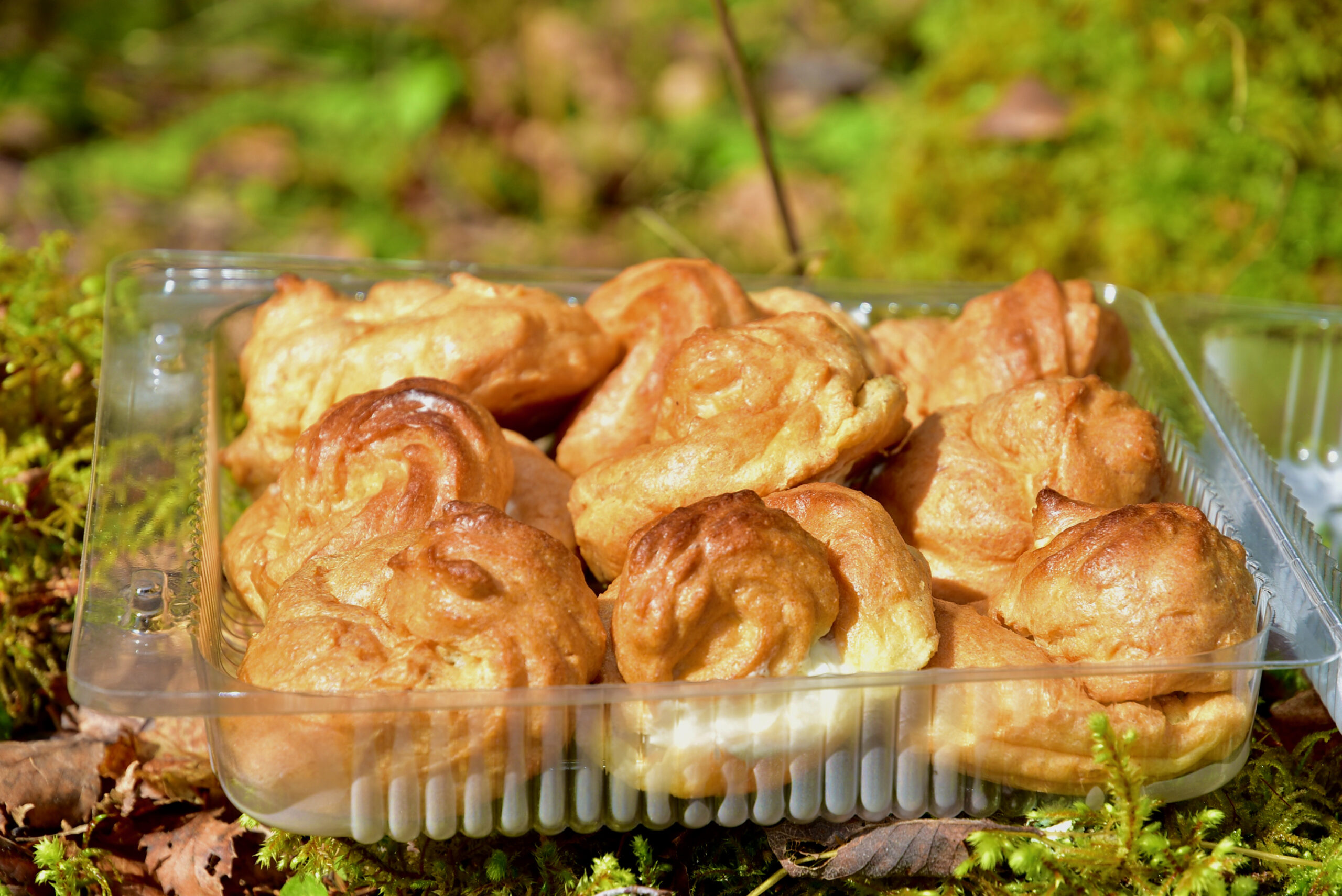 Suhkruvaba Mandlijahust Kohupiimatasku keto low carb diabetic kook tort