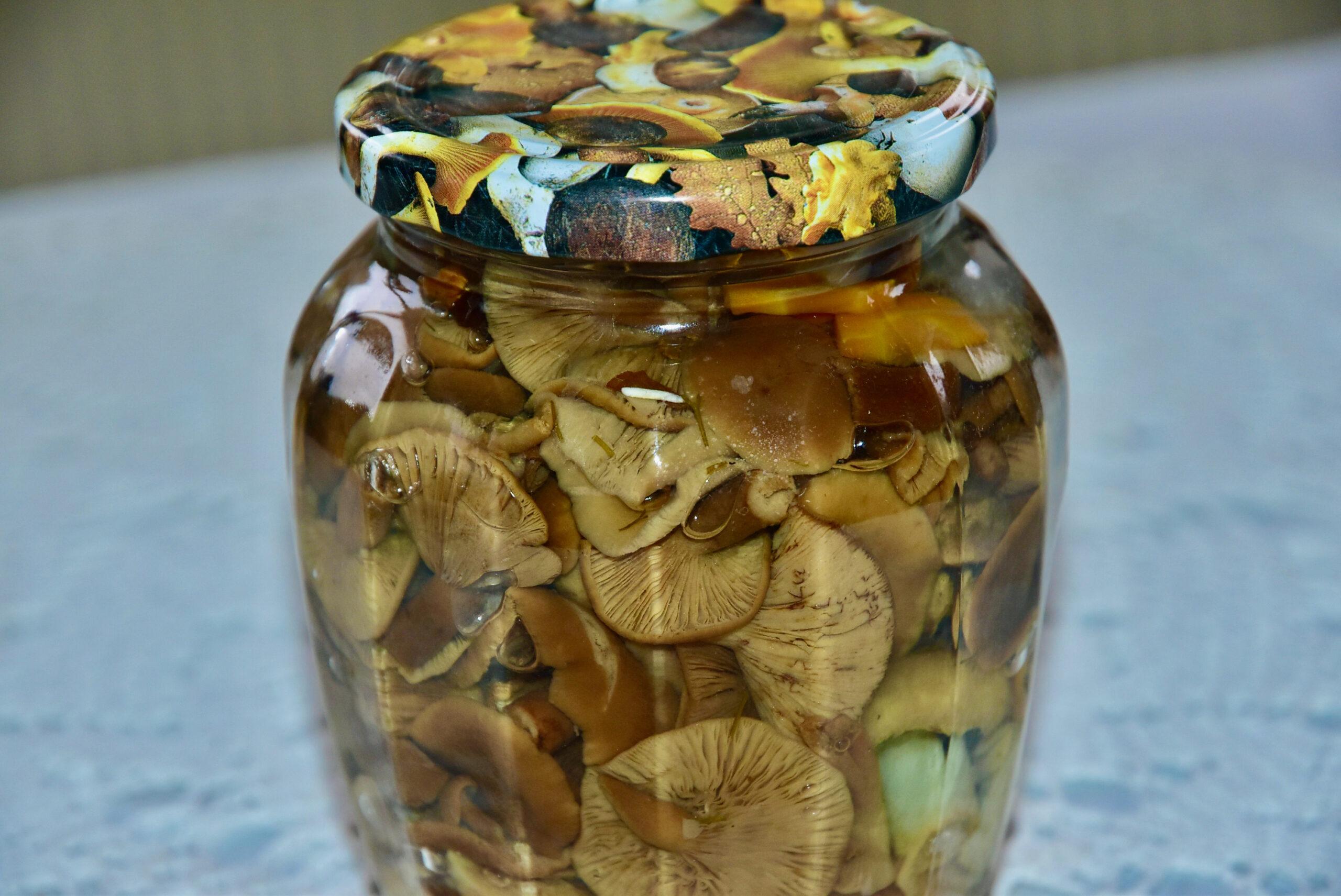 Marineeritud seened Golden Steviaga pickled mushrooms